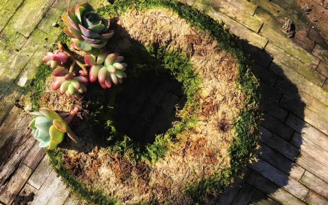 Succulent Wreaths – Sunday April 14th 2019 1:00 PM